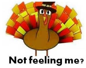 "graphic: Turkey asking, ""Not feeling me?"""