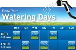 Watering days
